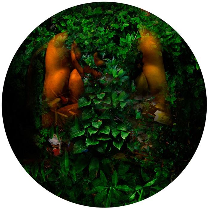 Serie Chromatique –Nature –Terras -la nuit– 16