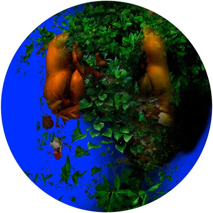 Serie Chromatique –Nature –Terras - Aquas–18