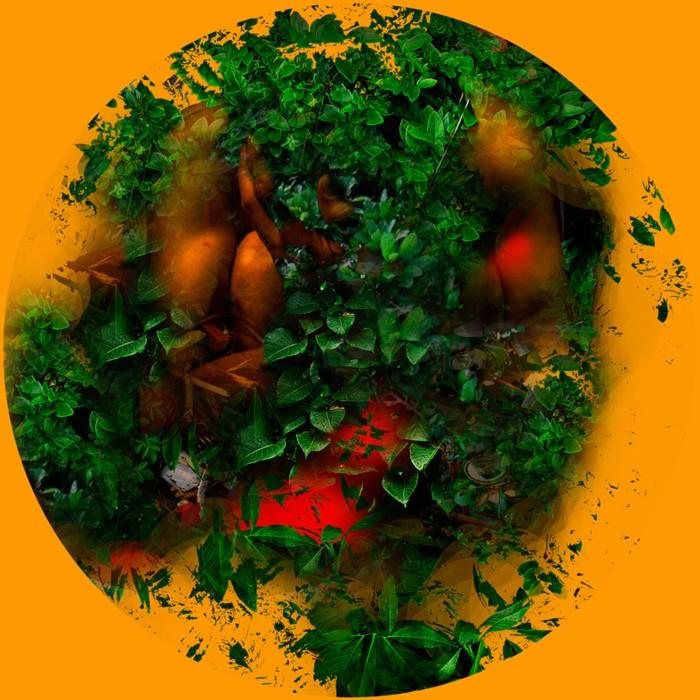 Serie Chromatique –Nature –Terras I– 20